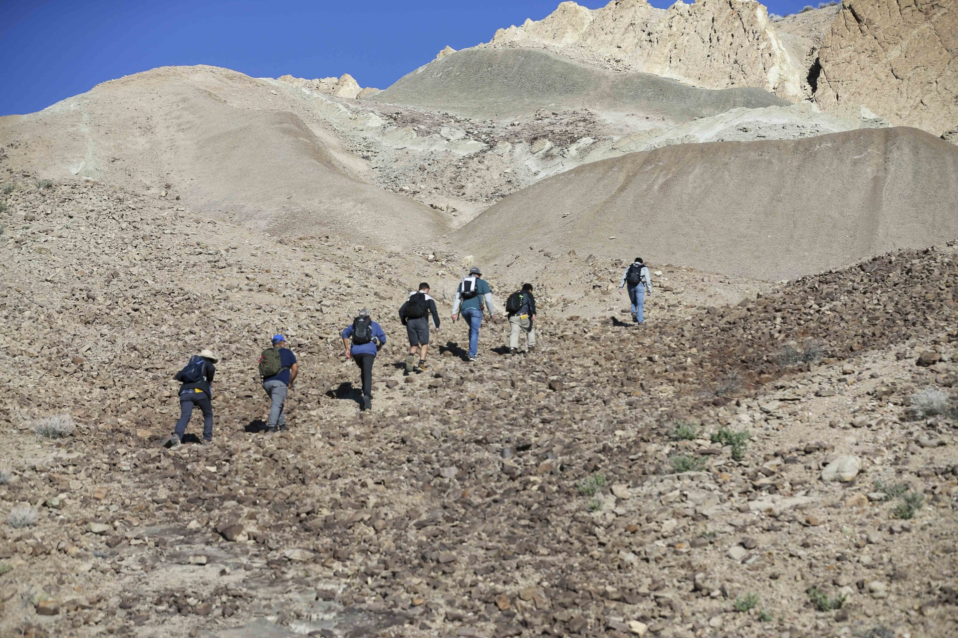 CSUSB geological sciences students out in the field.