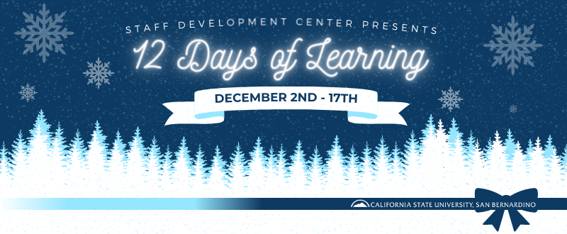12 Days of Learning