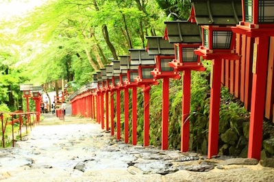 Row of Lanterns in Japan