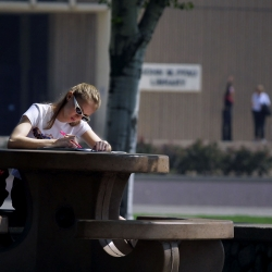 A student studying. National Student Transfer Week is Oct. 19-23.