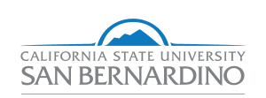 California State University San Bernardino-Rehabilitation Counseling
