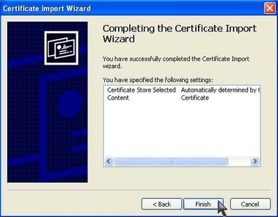 Root Certificate with IE - Step 5
